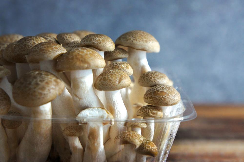 tofu-mushroom-salad-(9)