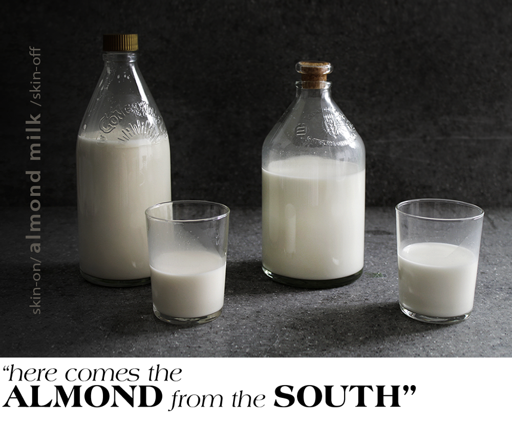 almond-milk-featured-header-2