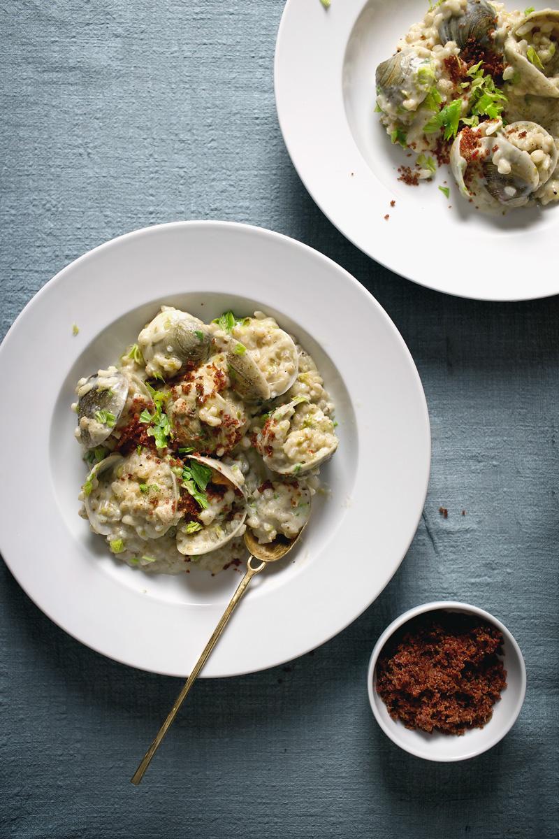 clam-chowder-risotto15