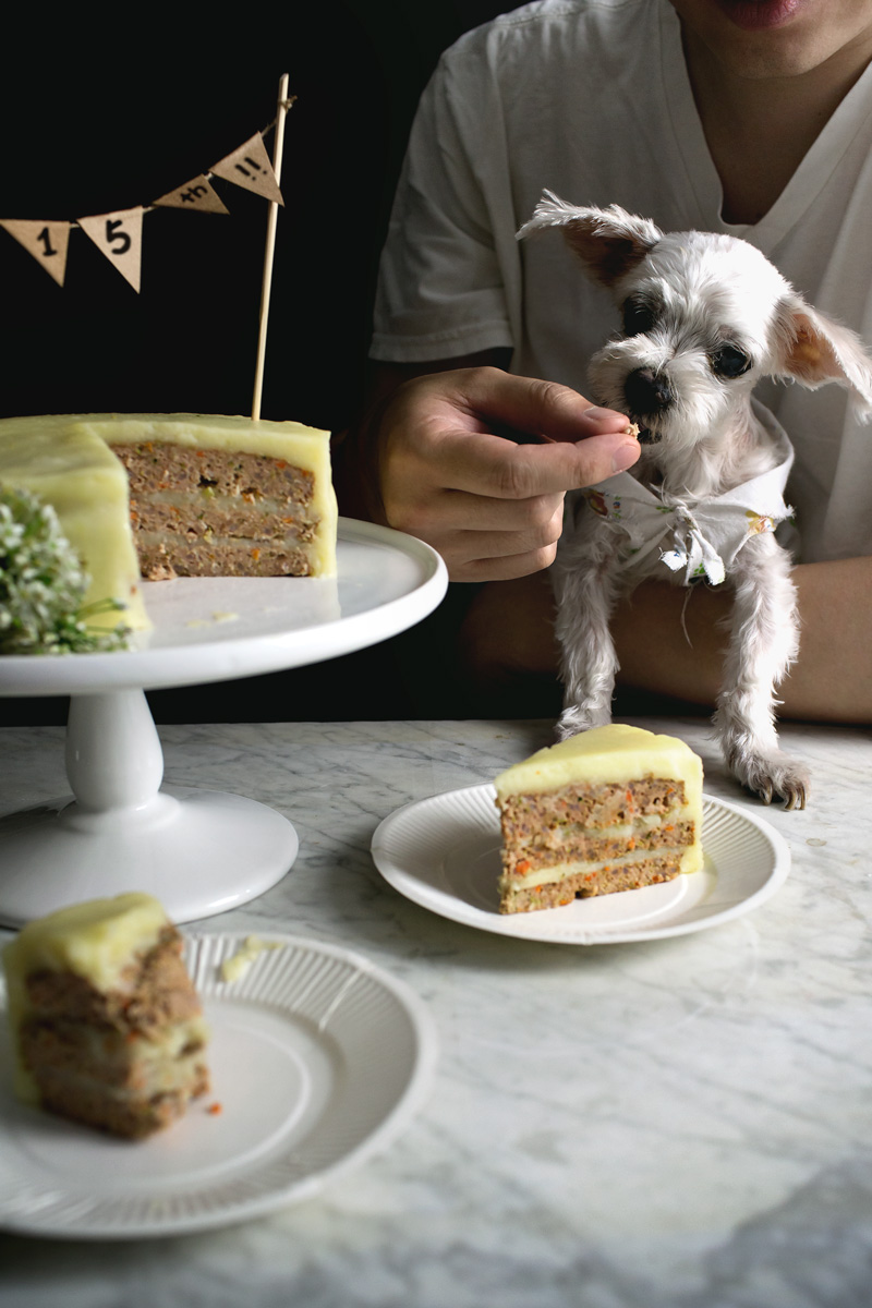 Meatloaf Bday Cake19 Print DOGGY MEATLOAF BIRTHDAY CAKE